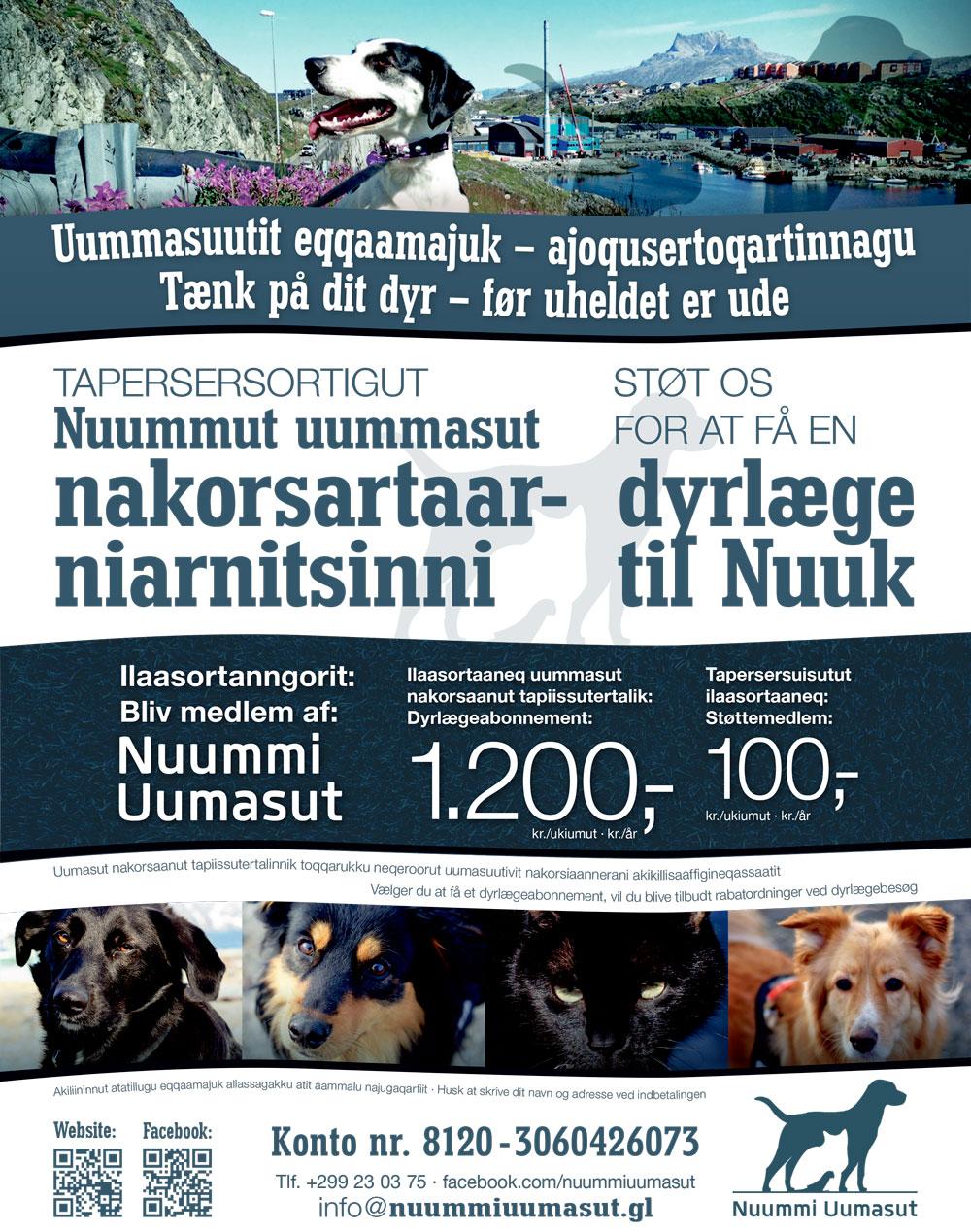 Nuummi Uumasut annonce